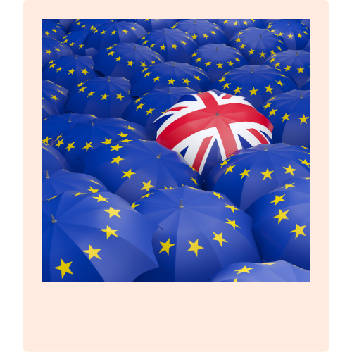 Navigating Brexit Guide | Onwards and Up